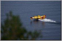 Canadair Golfe de Porto
