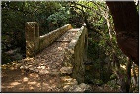 Gorges de Spélunca-DSC00006