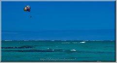 Île aux Cerfs-06571